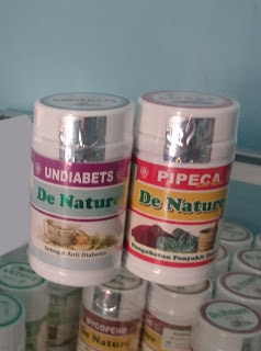 obat diabetes de nature indonesia